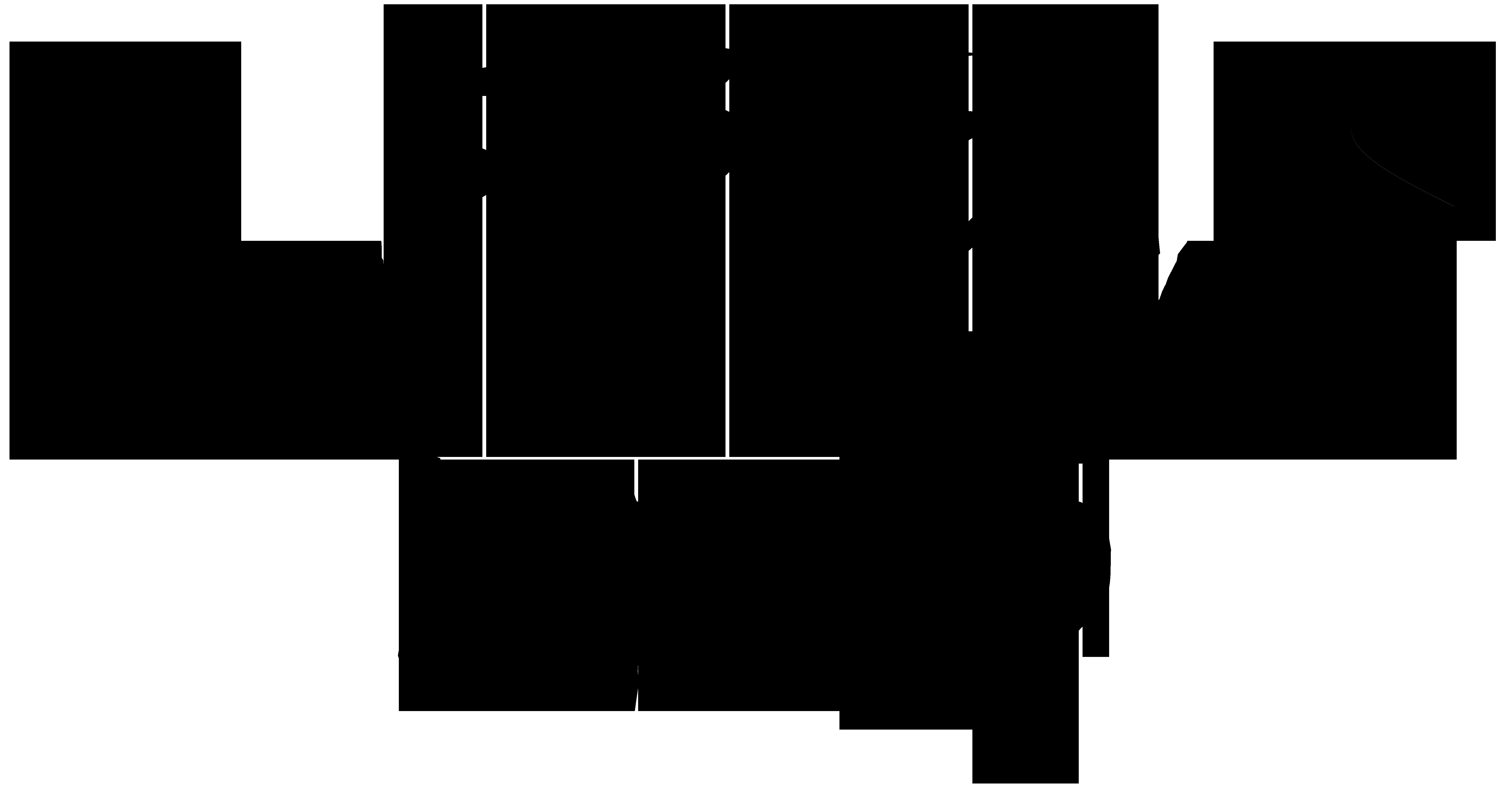 riptide-speed-tm-logo-black-transparent.png
